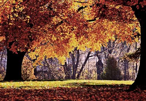 Octubre, escapada de otoño