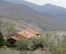 Turismo Rural Jerte casa rural en Jerte (Cáceres)