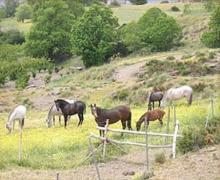 El Mirador de Los Bérchules casa rural en Berchules (Granada)