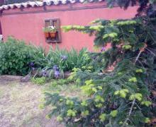 Pájaro Bobo casa rural en Bustares (Guadalajara)