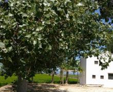 Casa Cusa casa rural en Sant Jaume D´ Enveja (Tarragona)