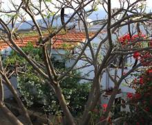 Casa Del Maestro casa rural en Candelaria (Tenerife)
