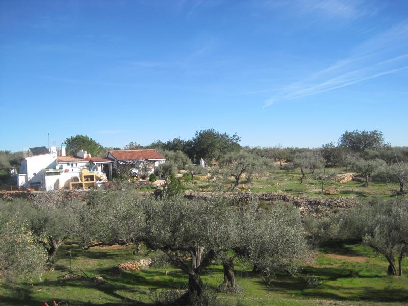 Casa rural delta del ebro villafeliche alojamientos for Casa rural tarragona