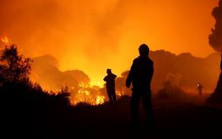 El peor año de incendios forestales