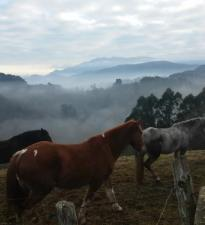 Enero y Febrero escapate Asturias