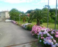 Hotel Ovio casa rural en Nueva De Llanes (Asturias)