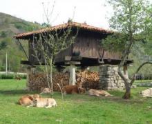 Hotel Rural Sucuevas casa rural en Cangas De Onis (Asturias)