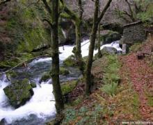 La Casa del Abuelo Justo casa rural en Boal (Asturias)