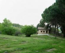 El Olivar De Domingo casa rural en Arenas De San Pedro (Ávila)