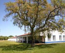 Monte das Faias casa rural en Grândola (Setubal)