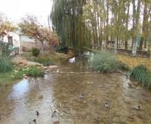 Las Piñuelas casa rural en Tubilla Del Lago (Burgos)