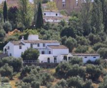 Casa Rural El Molinillo casa rural en Prado Del Rey (Cádiz)