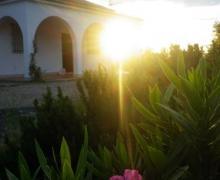 Cerrito Blanco casa rural en Algodonales (Cádiz)