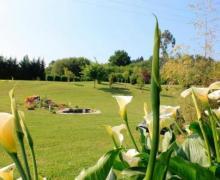 Hospedería del Alto de Marín casa rural en Entrambasaguas (Cantabria)