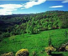 La Mazuela casa rural en Riotuerto (Cantabria)