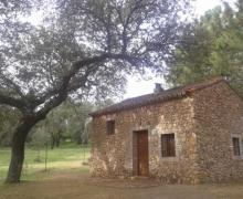 Casas Rurales Puente Nuevo casa rural en Villaviciosa De Cordoba (Córdoba)