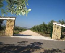 Cortijo El Pinar casa rural en Montilla (Córdoba)