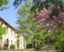El Cerrao de San José casa rural en Cifuentes (Guadalajara)
