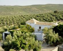 Cortijo Spiritu Santo casa rural en Ubeda (Jaén)