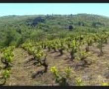Los Cerezos casa rural en Ponferrada (León)