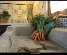 Casa Utxafava casa rural en Vila - Sana (Lleida)