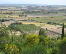 El Festí dels Sentits casa rural en Sant Martí De Maldà (Lleida)