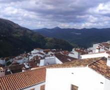 Casa El Molino de Aceite casa rural en Jubrique (Málaga)