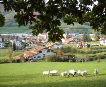 Casa Lizartzanea casa rural en Leitza (Navarra)