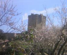 El Granero de los Duques casa rural en San Felices De Los Gallegos (Salamanca)
