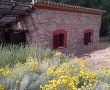 Lost Island casa rural en Cazalla De La Sierra (Sevilla)