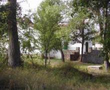 Las Nogueras casa rural en Medinaceli (Soria)