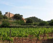 Masia Les Torres de Selma casa rural en El Pla De Manlleu (Tarragona)