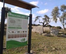 La Casa del Gallo casa rural en Almeida De Sayago (Zamora)