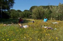Gaia en Conil De La Frontera (Cádiz)
