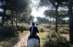 Aires de Doñana en El Rocio (Huelva)