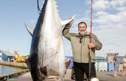 Pescatours en Girona (Girona)