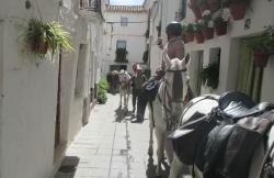 Cortijo Las Encinillas en Güejar (Granada)