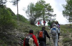 Andabosques del sur en Segura De La Sierra (Jaén)