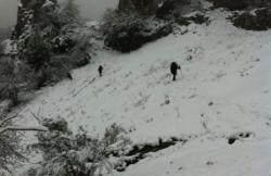 Asturias Naturaller en Felechosa (Asturias)
