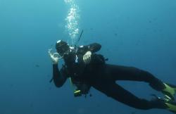 Big Blue Diving en Calvia (Mallorca)