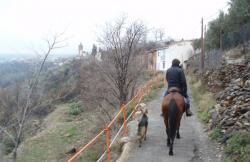 Cabacci en Guadix (Granada)