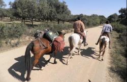 Cabal-Natur en Montoro (Córdoba)