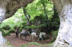 Caballerizas Bikuña en Salvatierra ( Agurain ) (Alava)
