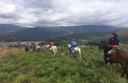 Caballos La Vera en Jarandilla De La Vera (Cáceres)
