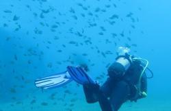 Dawn Dives Academy en Playa Blanca (Lanzarote)