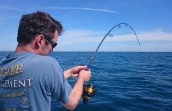 Delta Game Fishing en Deltebre (Tarragona)