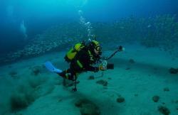 Dive College Lanzarote en Yaiza (Lanzarote)