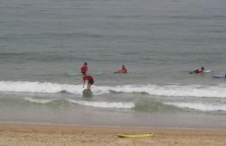 Escuela de Surf South Coast en Vejer De La Frontera (Cádiz)