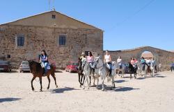 Finca Valverde en Horcajo Medianero (Salamanca)