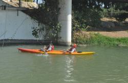 Kayak Sevilla en Sevilla (Sevilla)